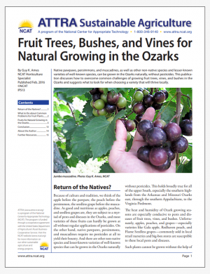 Fruit Trees, Bushes, and Vines for Natural Growing in the Ozarks