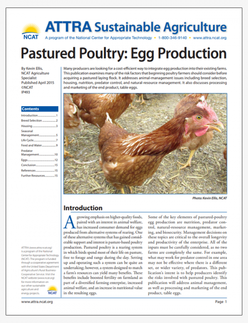 Pastured Poultry: Egg Production