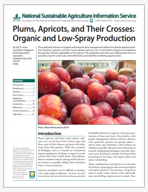 Plums, Apricots, and Their Crosses: Organic and Low-Spray Production