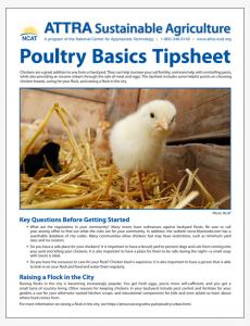 Poultry Basics Tipsheet