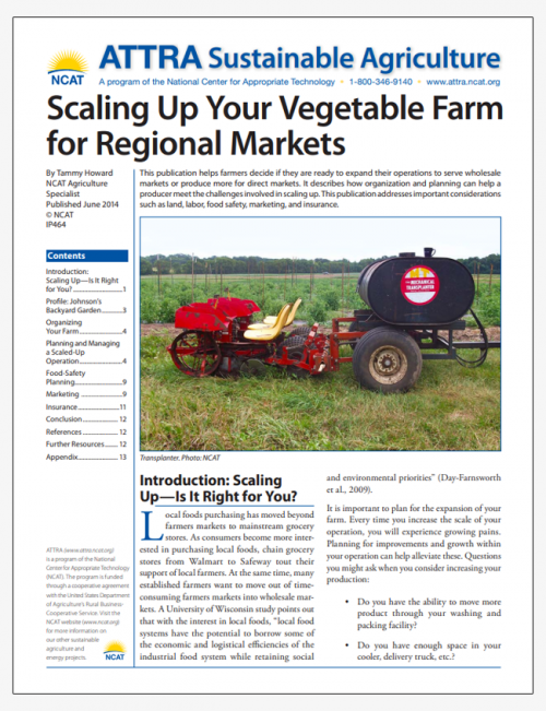 Scaling Up Your Vegetable Farm for Regional Markets