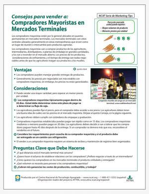 Consejos para vender a Compradores Mayoristas en Mercados Terminals