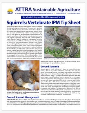 Squirrels: Vertebrate IPM Tip Sheet