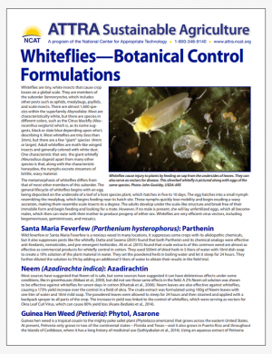 Whiteflies - Botanical Control Formulations