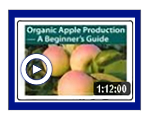 Sustainable Apple Production -- A Beginners Guide