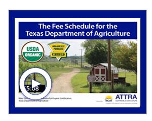 TDA Texas Webinar