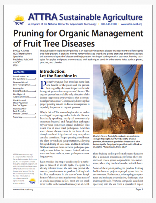 Pruning for Organic Management of Fruit Tree Diseases