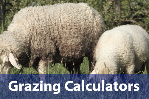 grazing-calculators