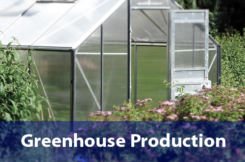 greenhouse-production