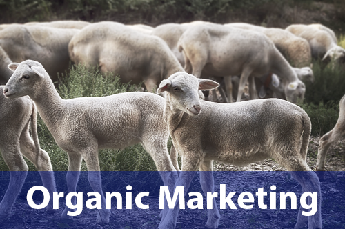 organic-marketing