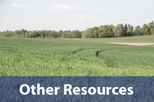 other-resources