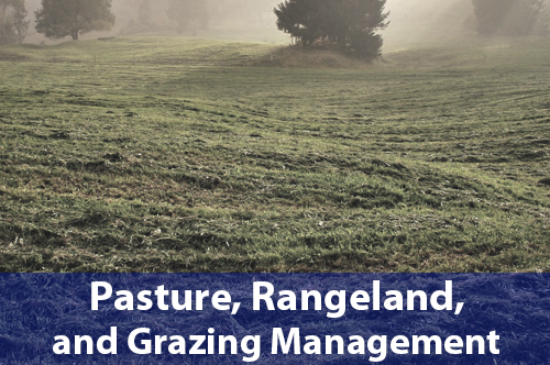pasture-rangeland-and-grazing-management
