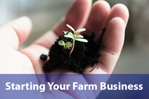 starting-your-farm-business