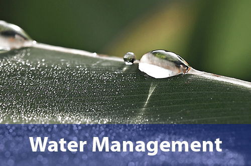 water-management