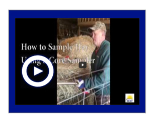 Sample Hay Using a Core Sampler Video