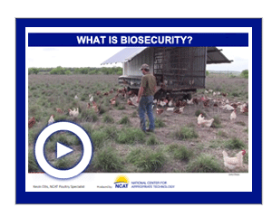 What is Biosecurity Playlist