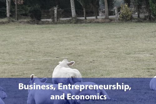 business-entrepreneurship-economics