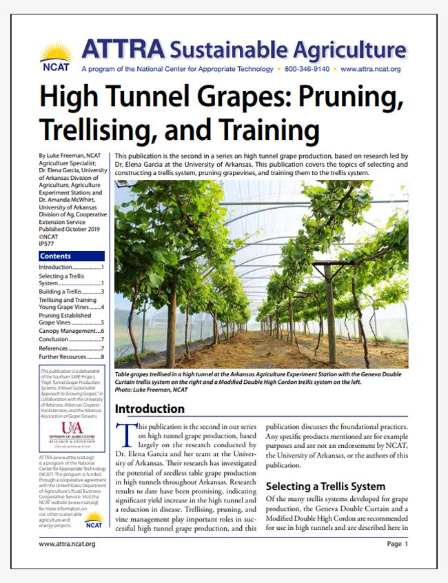 High Tunnel Grapes: Pruning, Trellising, and Training