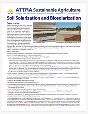Soil Solarization and Biosolarization - Tipsheet