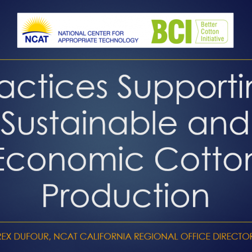Practices Supporting Sustainable and Economic Cotton Production