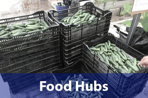 food-hubs