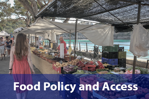 food-policy-access