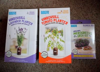 windowsill grow kits