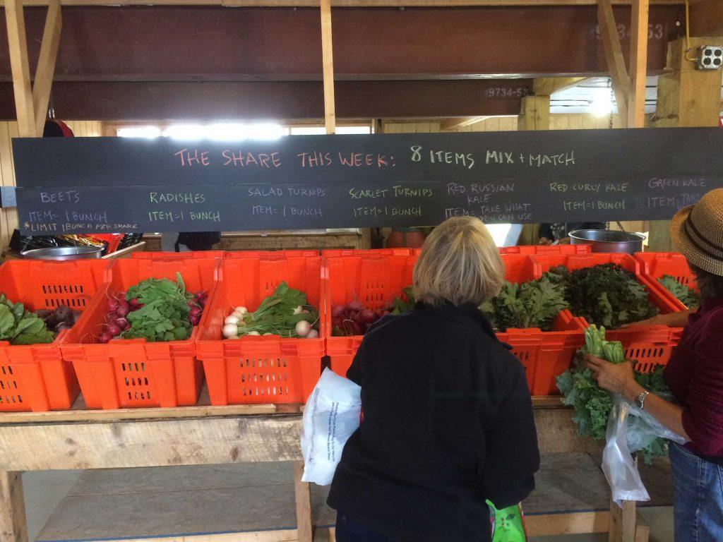 Picadilly Market