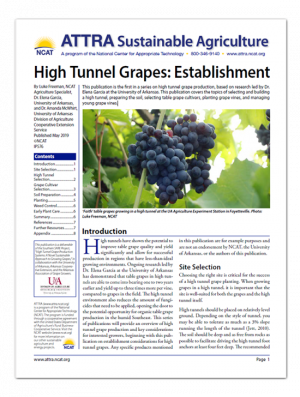 High Tunnel Grapes: Establishment
