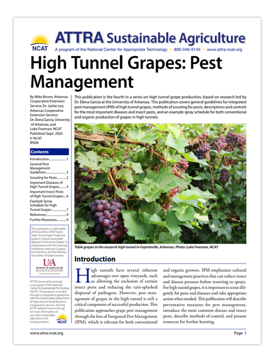 high tunnel grapes ipm