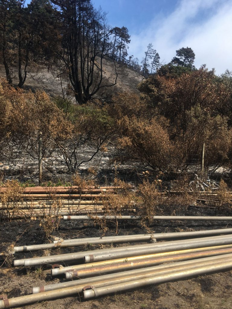 Burned forest and irrigation pipes