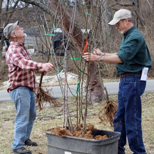 Guy and Mayor with fruit trees