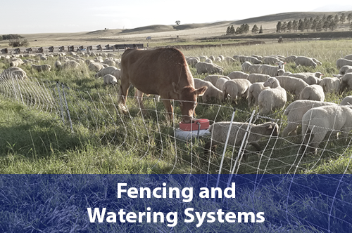 fencing-and-watering-systems